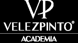 VP Academia
